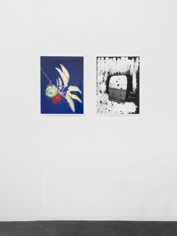 Placette-DouglasMandry-JulienGremaud-06-web