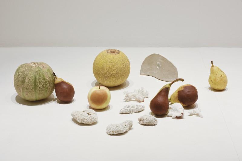 Placette-JuliaWidmann-frucht-web